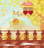 Owls couple under umbrella, autumn day  — Stock Vector