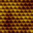 Honeycomb texture — Stock Photo