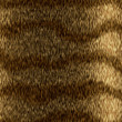 Stock Photo: Animal fur