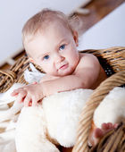 Cute little baby infant in basket with teddy — Stock Photo