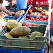 Fresh vegetables on market in summer outdoor — 图库照片