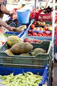 Fresh vegetables on market in summer outdoor — Stock Photo