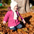 Cute littloe girl playing outdoor in autumn — Stock Photo #18624263