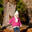 Cute littloe girl playing outdoor in autumn — Stock Photo #18624421