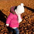 Cute littloe girl playing outdoor in autumn — Stock Photo #18624521