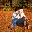 Royalty-Free Stock Photo: Happy young couple smilin in autumn outdoor