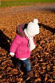 Roztomilý littloe dívka hrající venkovní na podzim — Stock fotografie