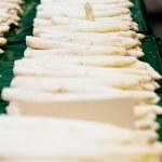 Fresh seasonal asparagus on market — Stock Photo #23710987