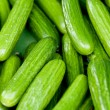 Fresh green cucumber on market macro - Stock Photo