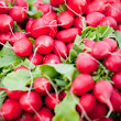 Fresh red raddisch closeup macro outdoor market — Stock Photo