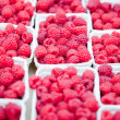 Fresh tasty pink raspberry closeup macro on market outdoor — Stock Photo #28123303