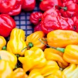 Fresh healthy red yellow geen paprika pepper macro closeup — Stock Photo