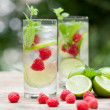 Fresh cold drink water ice cubes peppermint lime raspberry — Stock Photo #28128605