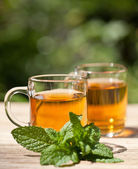Herbal peppermint tea closeup macro outdoor summer — Stock Photo