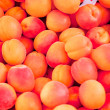 Fresh orange red apricots peaches macro closeup on market — Stock Photo