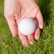 Golf ball and iron on green grass detail macro summer outdoor — Foto Stock