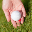 Golf ball and iron on green grass detail macro summer outdoor — 图库照片