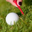 Golf ball and iron on green grass detail macro summer outdoor — Stock Photo #28959017