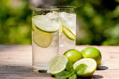 Fresh cold refreshment drink mineral water soda with lime and mint — Stock Photo
