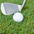 Golf ball and iron on green grass detail macro summer outdoor — Stock Photo #29406647