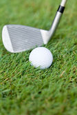 Golf ball and iron on green grass detail macro summer outdoor — Stock Photo