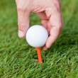 Golf ball and iron on green grass detail macro summer outdoor — Stock Photo #29685849