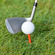 Stock Photo: Golf ball and iron on green grass detail macro summer outdoor