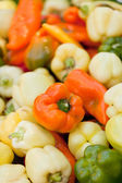 Colorfull aromatic fresh bell pepper paprika on market — Stock Photo