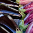 Fresh violet eggplant in summer outdoor on market — Stock Photo #30406903
