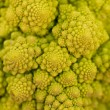 Fresh green romanesco broccoli cabbage macro closeup — Stock Photo