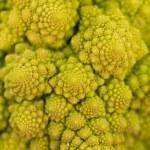 Fresh green romanesco broccoli cabbage macro closeup — Stock Photo #30407577