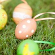 colored easter eggs group in green grass outdoor in spring — Stock Photo