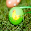 Colored easter eggs group in green grass outdoor in spring — Stock Photo #31657767