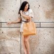 Attractive young brunette woman in sexy dress and handbag — Stock Photo #31661309