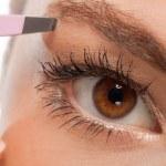 Постер, плакат: Youtg beautiful woman eyebrow plucking tweezers eyes hair