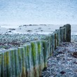 Baltic sea background evening wooden wave breaker beach — Stock Photo