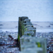 Baltic sea background evening wooden wave breaker beach — Foto de Stock