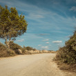 Empty road in sunlight blue sky destination — Stock Photo