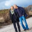 Mature senior couple walking on the beach autumn winter — Stock Photo #35610709