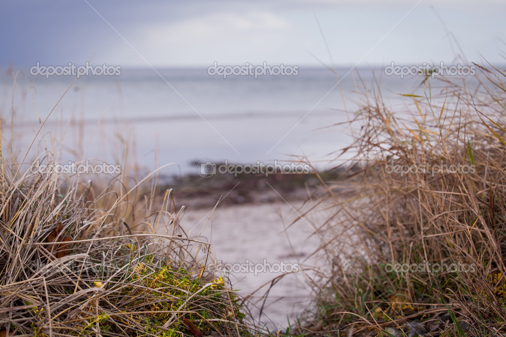 Картинки фото пейзажи осень зима