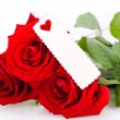 Valentines gift of beautiful red roses — Stock fotografie