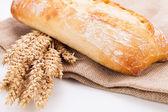 Fresh baked white ciabatta bread baguette objects — Stock Photo
