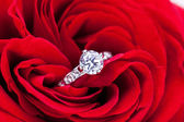 Diamond engagement ring in the heart of a red rose — Stock Photo