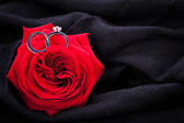Diamond engagement ring in the heart of a red rose — Stockfoto
