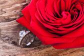 Bellissimo anello sul fondo in legno e rosa rossa — Foto Stock