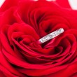 Diamond engagement ring in the heart of a red rose — Stock Photo #37444899