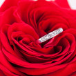 Diamond engagement ring in the heart of a red rose — Stok fotoğraf #37444899