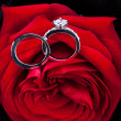 Diamond engagement ring in the heart of a red rose — Photo