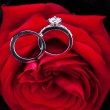 Diamond engagement ring in the heart of a red rose — 图库照片