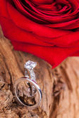 Beautiful ring on wooden background and red rose — Photo